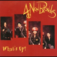 Okładka singla 4 Non Blondes <i>What's Up</i>