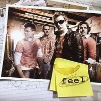 Okładka płyty <i>Feel</i> zespołu Feel