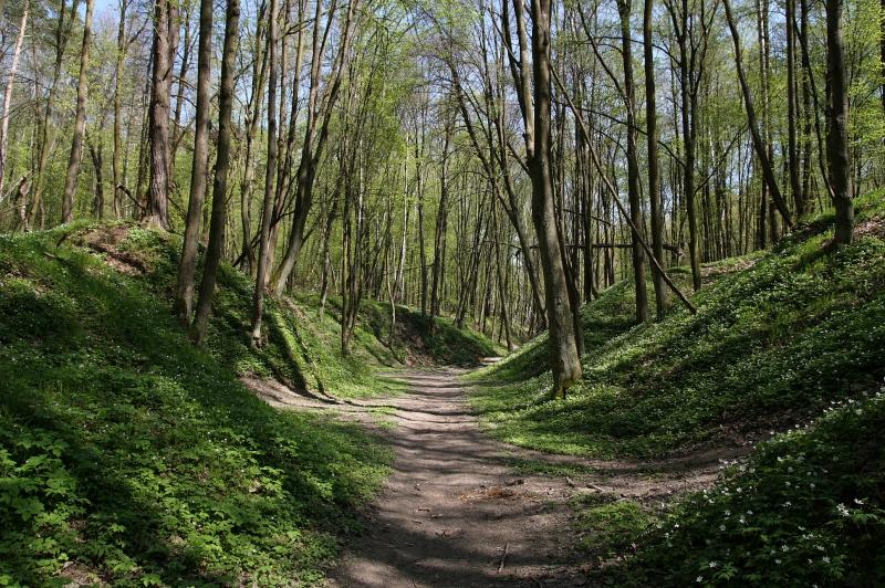 Nałęczów - Kraina Lessowych Wąwozów