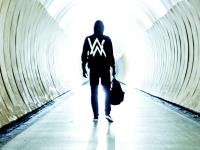 Alan Walker feat. Gavin James
